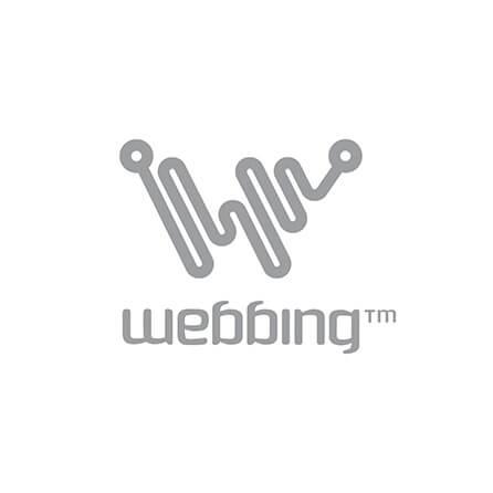 logo-principale-webbing-446xauto_1_1